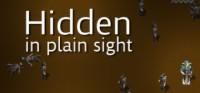 hidden plain logo